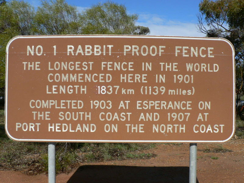 rabbit proof fence analysis